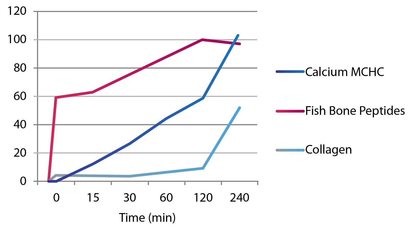 kalsio+ absorption